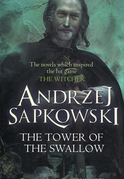The Tower of the Swallow: Witcher 6